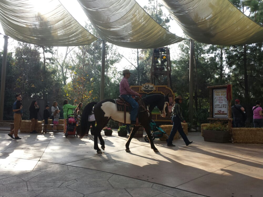 A horse leads out the next group of characters as part of the Frontierland Troupe