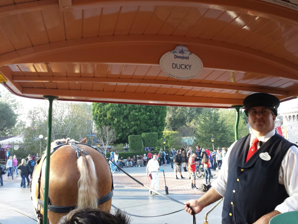 Thanks to no parade today the horse drawn street cars are running still