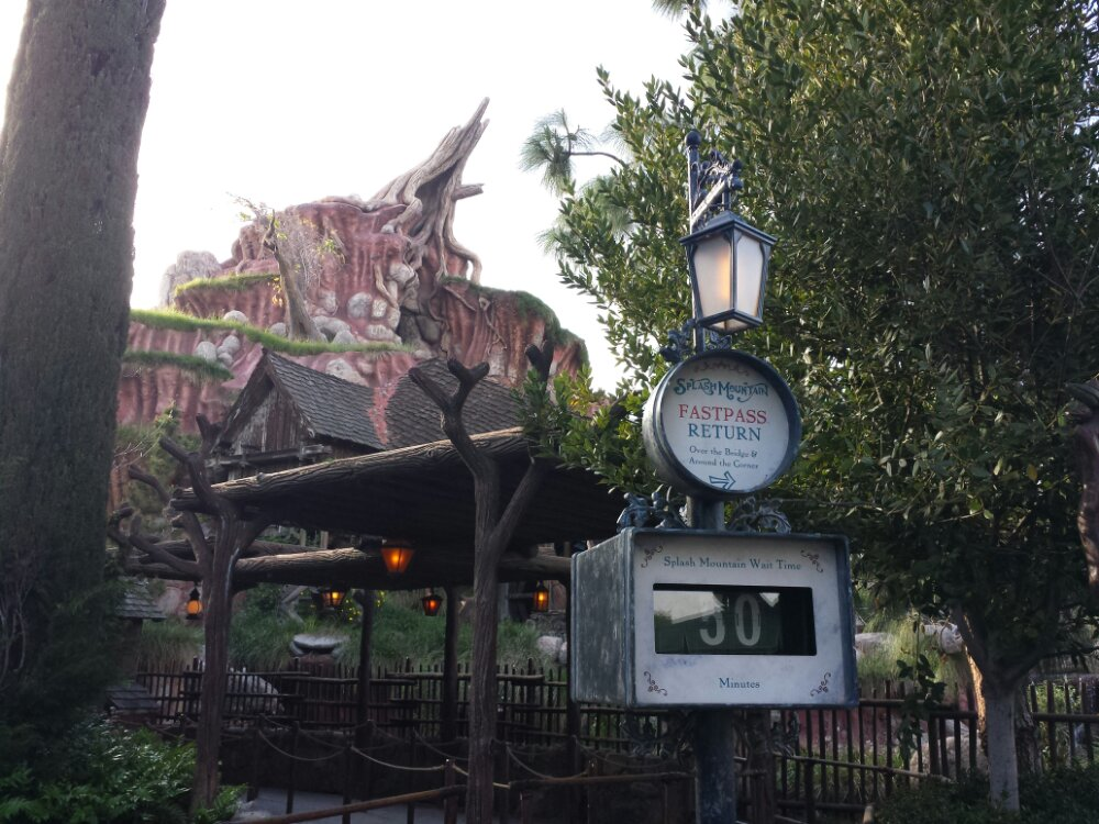Splash Mountain has returned.  A 50min wait this afternoon