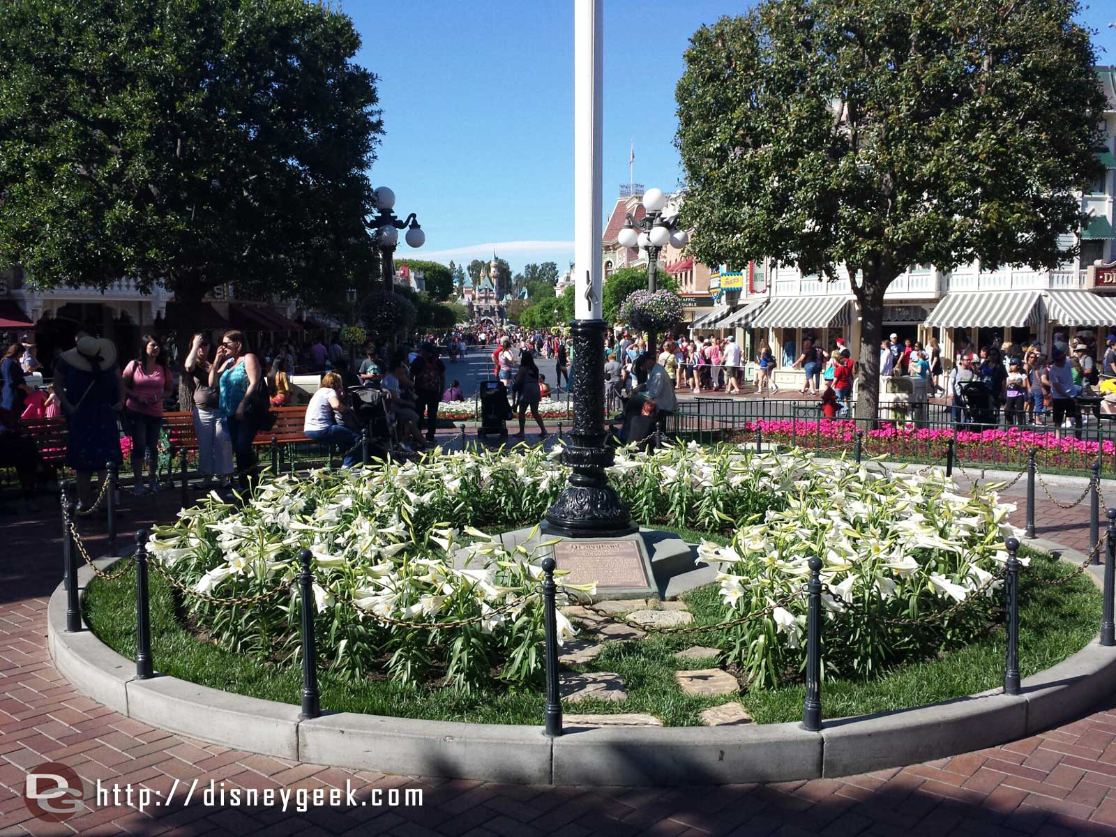#Disneyland Town Square flag pole/dedication plaque planter