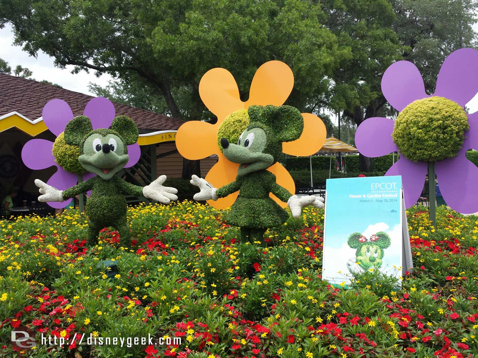 Mickey & Minnie topiaries advertising the Epcot F&G Festival @ Downtown Disney