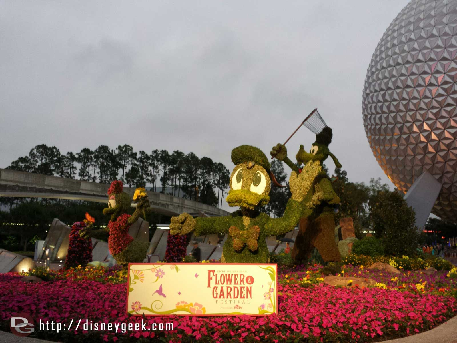Donald topiary –  Epcot International Flower & Garden Festival