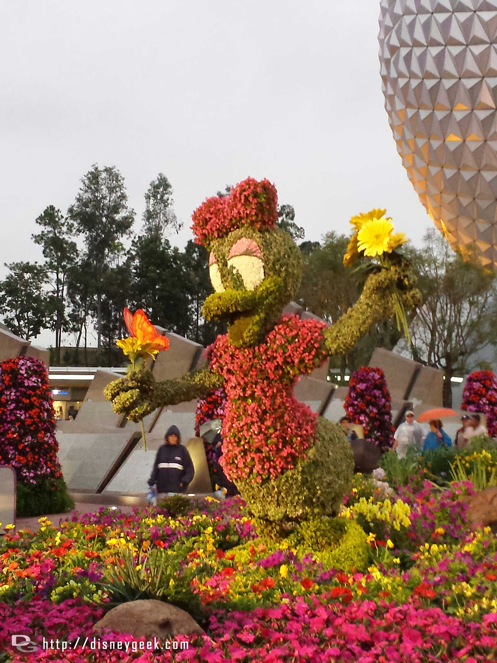 Daisy topiary –  Epcot International Flower & Garden Festival