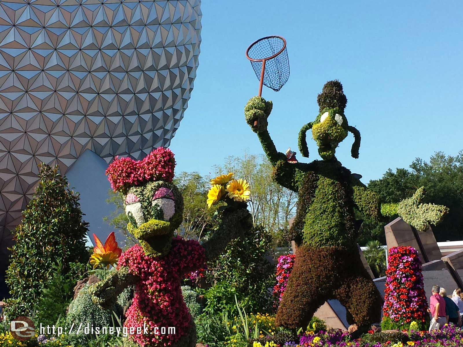 A closer look at Goofy and Daisy topiaries - Epcot International Flower & Garden Festival