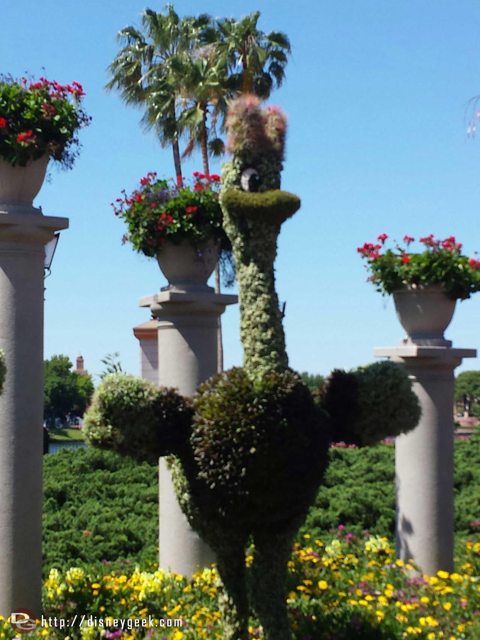Fantasia Ostrich Topiary - Epcot International Flower & Garden Festival