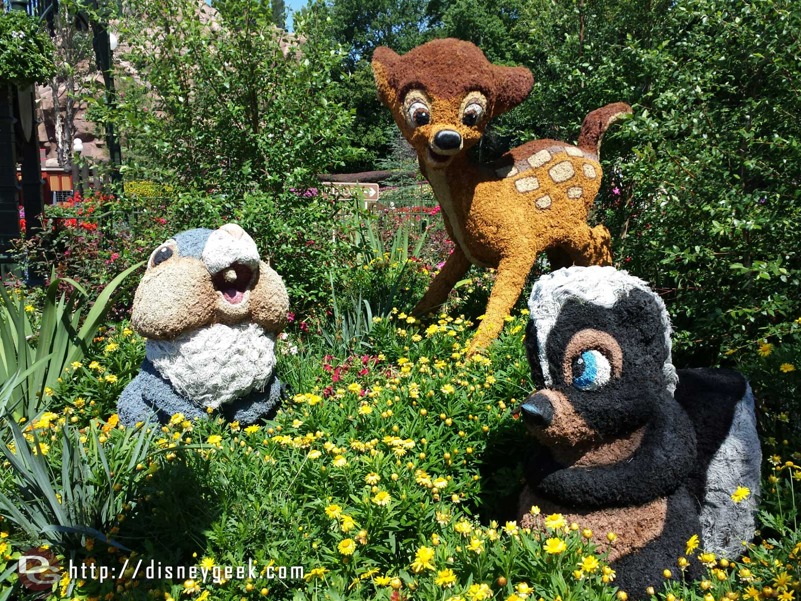 Bambi, Thumper & Flower topiaries by Canada    –  Epcot International Flower & Garden Festival