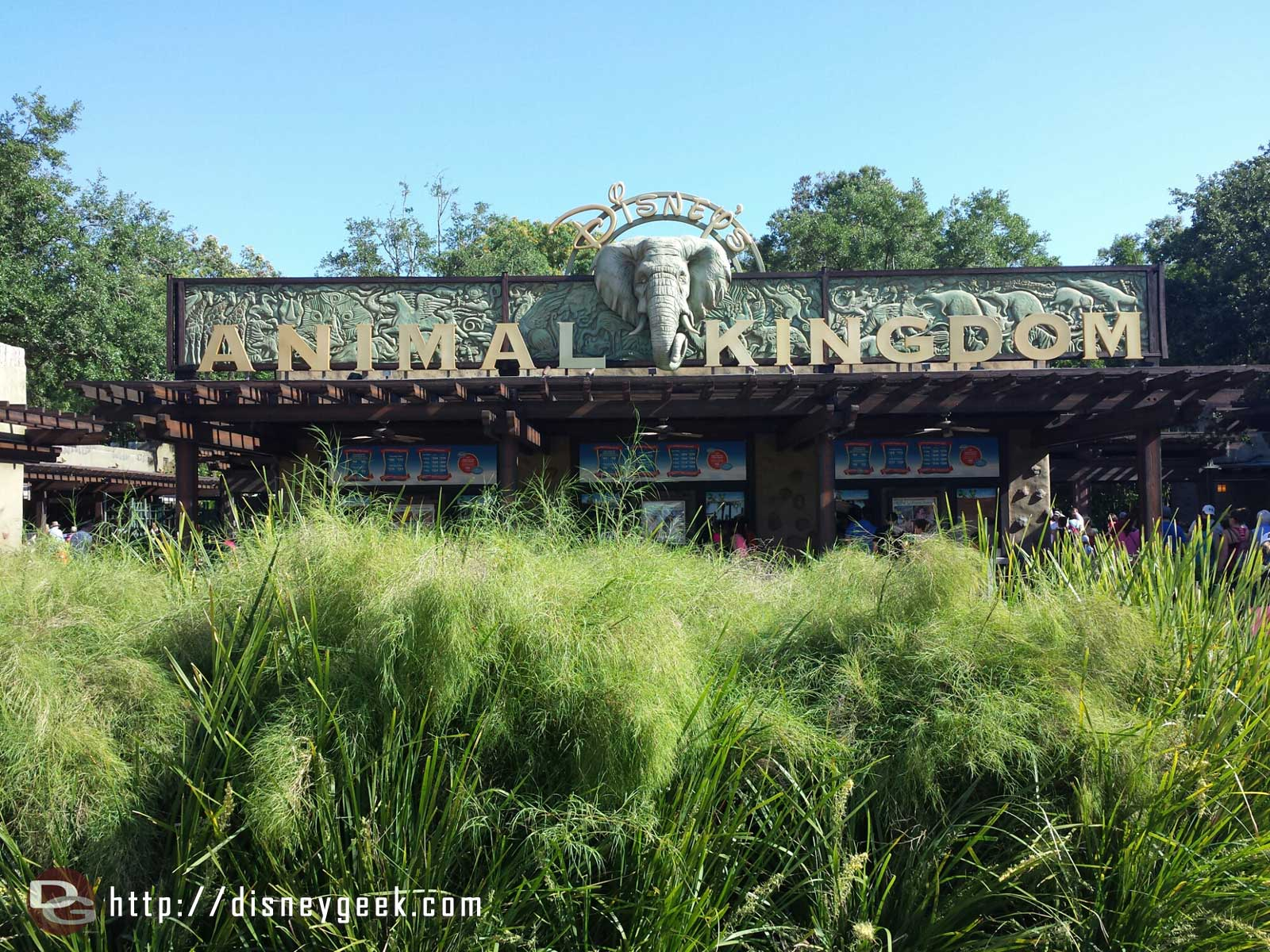 Arriving at Disney's Animal Kingdom