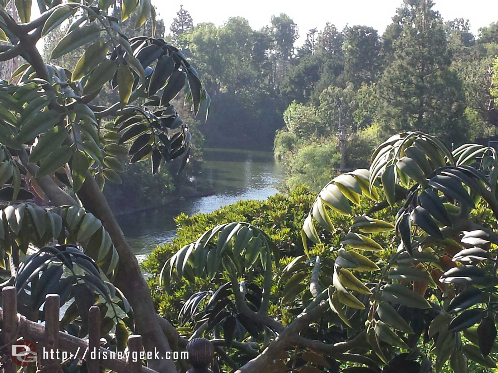 The Rivers of America from Tarzan's Treehouse