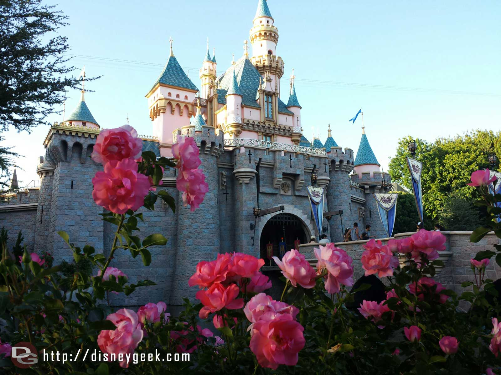 Sleeping Beauty Castle with roses #Disneyland