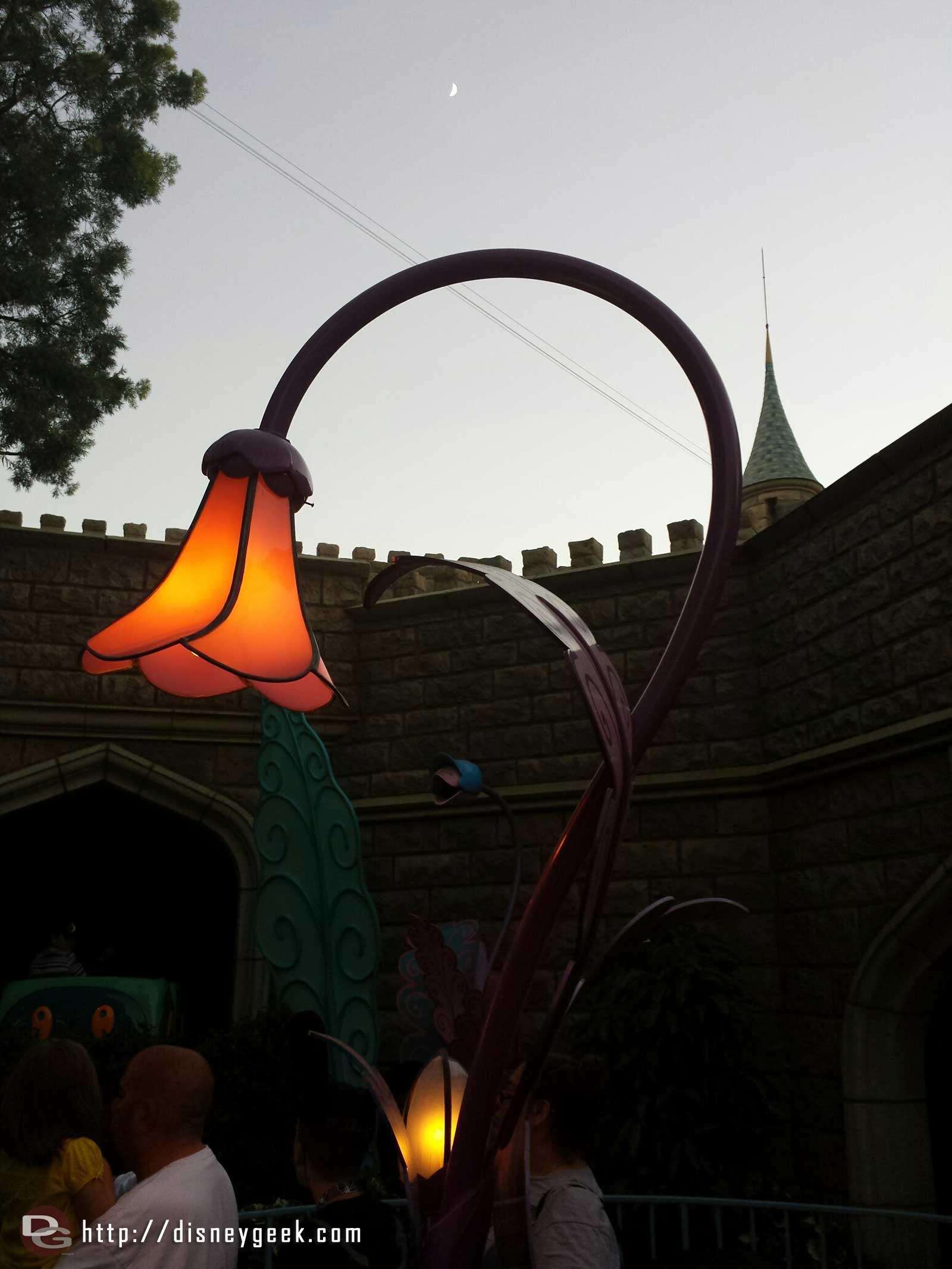 A flower light in the Alice in Wonderland queue