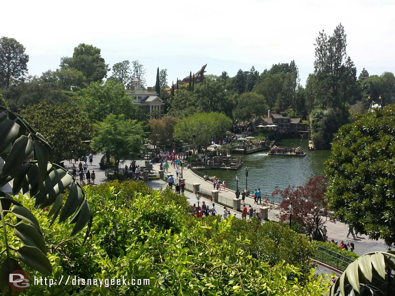 Looking towards the Rivers of America and the Haunted Mansion from the tree house #Disneyland