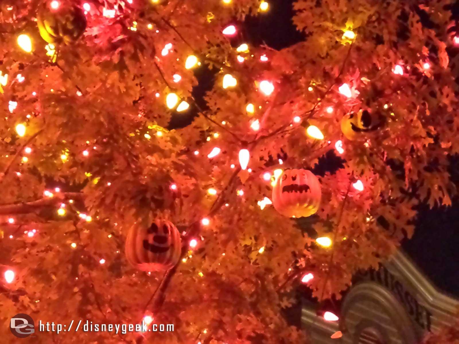 Close up of the Halloween tree in Frontierland #Disneyland