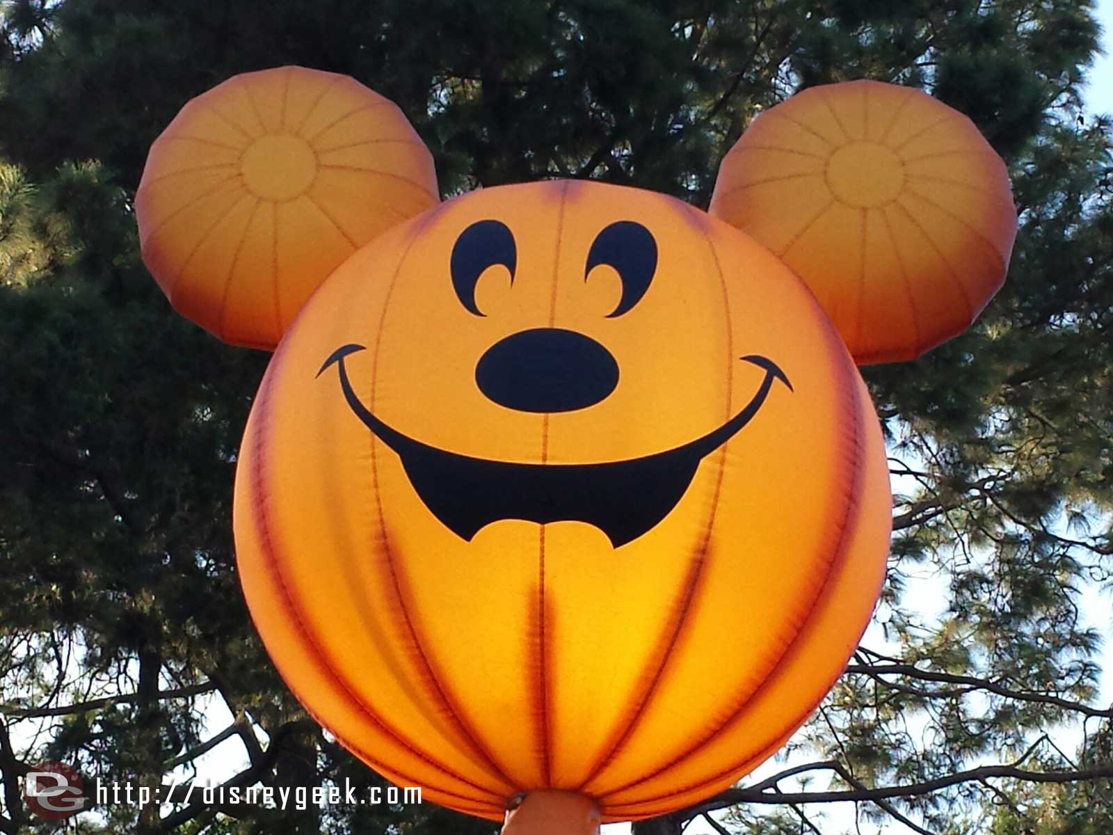 Mickey's Halloween Party preparation is taking over the park #Disneyland #HalloweenTime
