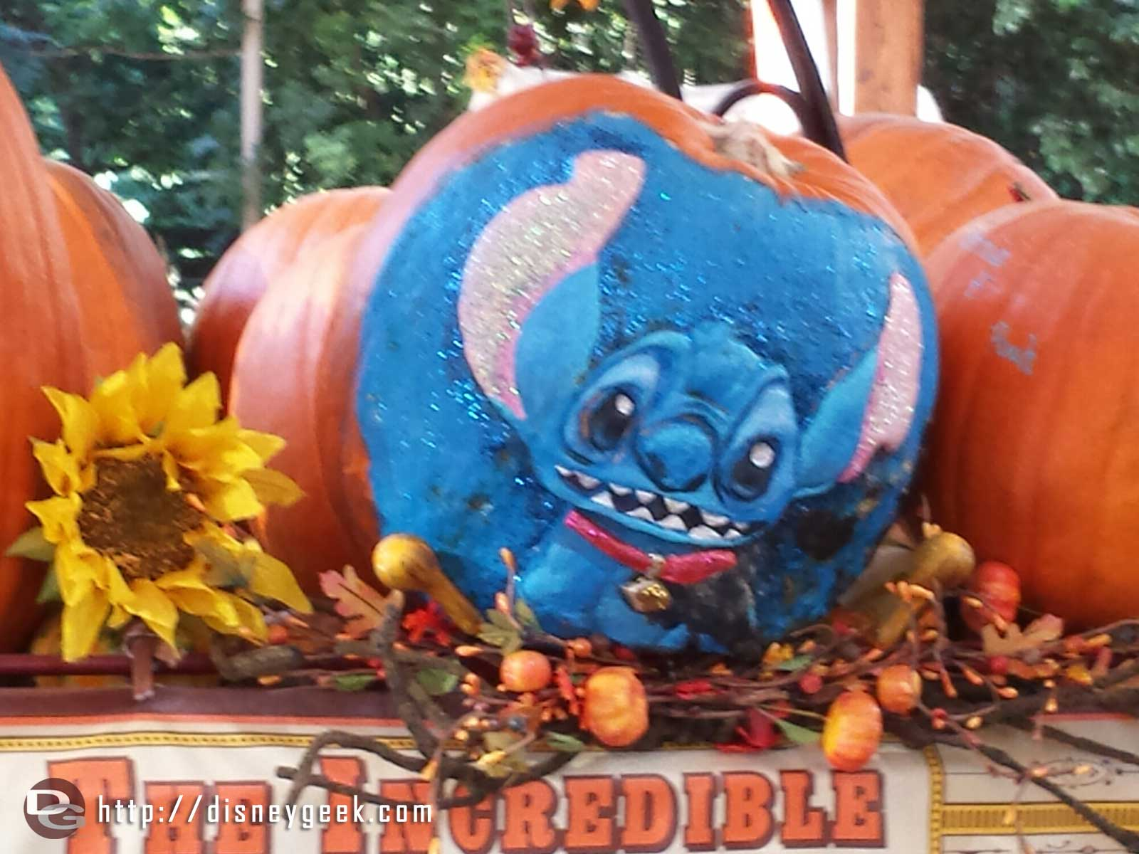 A Stitch pumpkin at the Big Thunder Ranch Jamboree Halloween Carnival #Disneyland