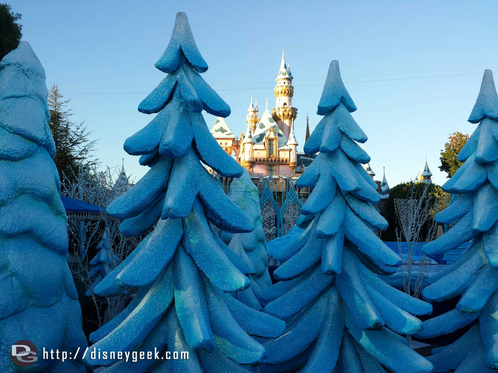 A forest of blue trees around the castle for the taping of the annual Christmas parade #Disneyland