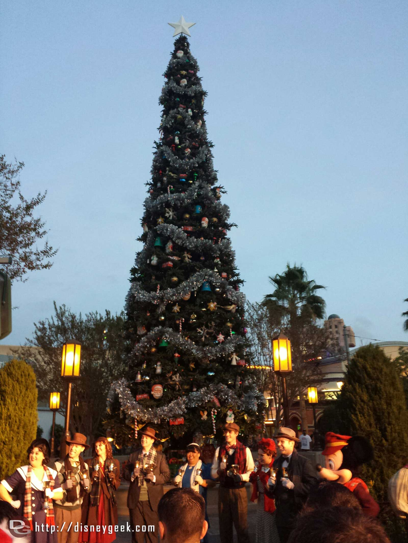 #BuenaVistaStreet Tree Lighting, the citizens of Buena Vista Street, bell ringers and characters assemble at the tree