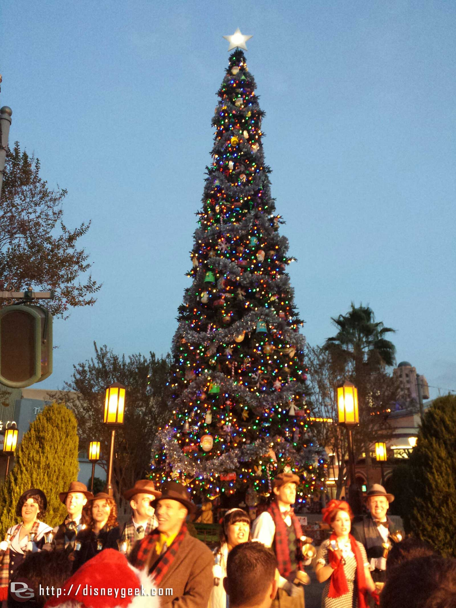 The #BuenaVistaStreet Tree lit up for the evening