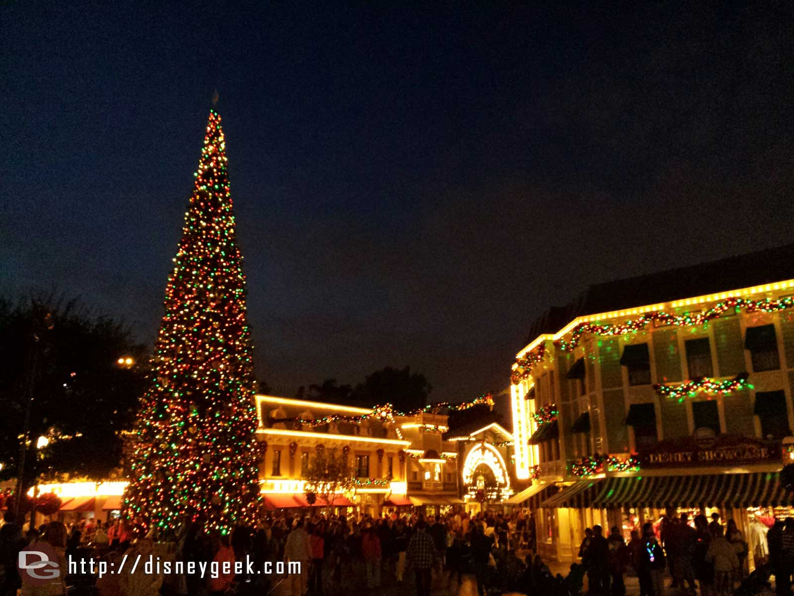 #Disneyland Town Square Christmas Tree
