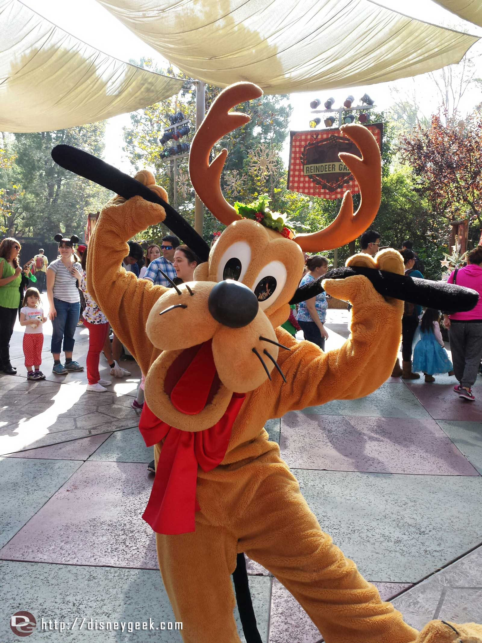 Pluto at the Jingle Jangle Jamboree #Disneyland