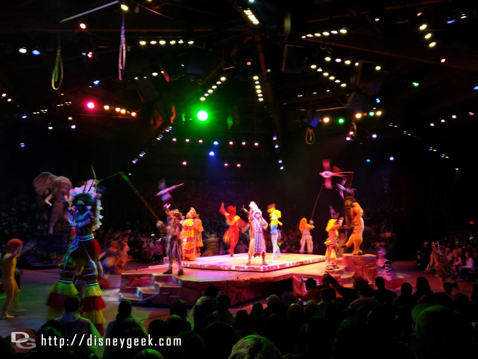 Festival of the Lion King – finale #wdw