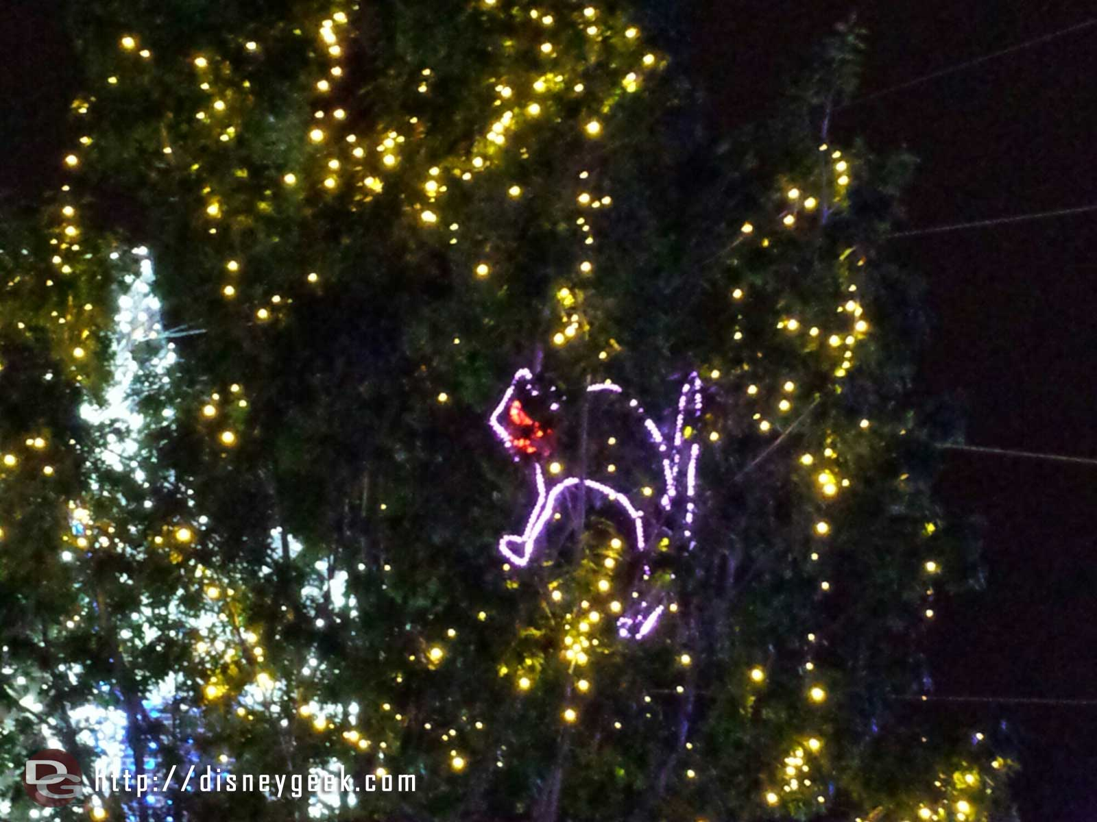 Found the cat – Osborne Family Spectacle of Dancing Lights at Disney's Hollywood Studios
