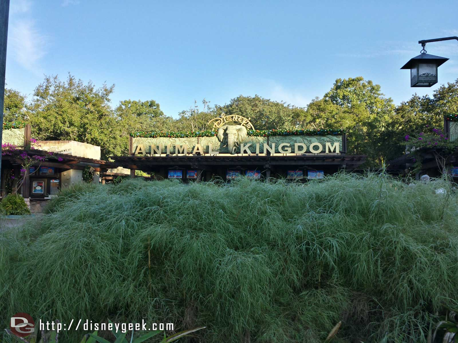 At Disney's Animal Kingdom to start the day #WDW