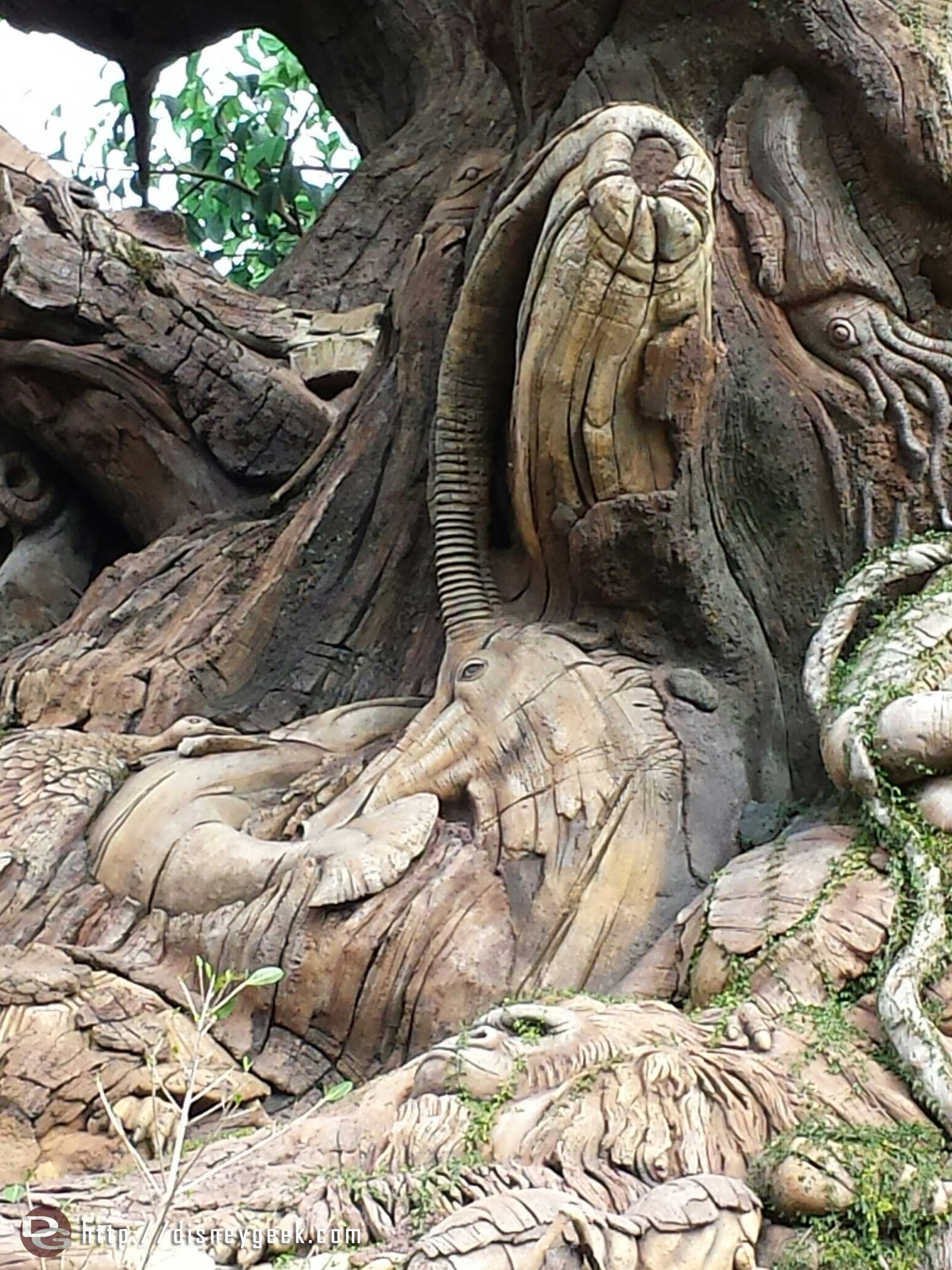 A closer look at the Tree of Life – – Disney's Animal Kingdom