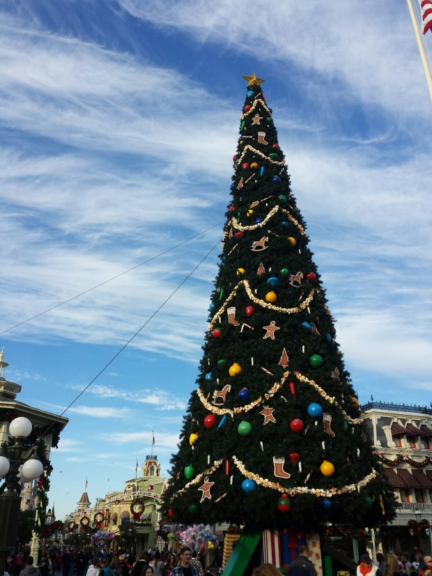 The tree in Town Square at the Magic Kingdom has been installed.
