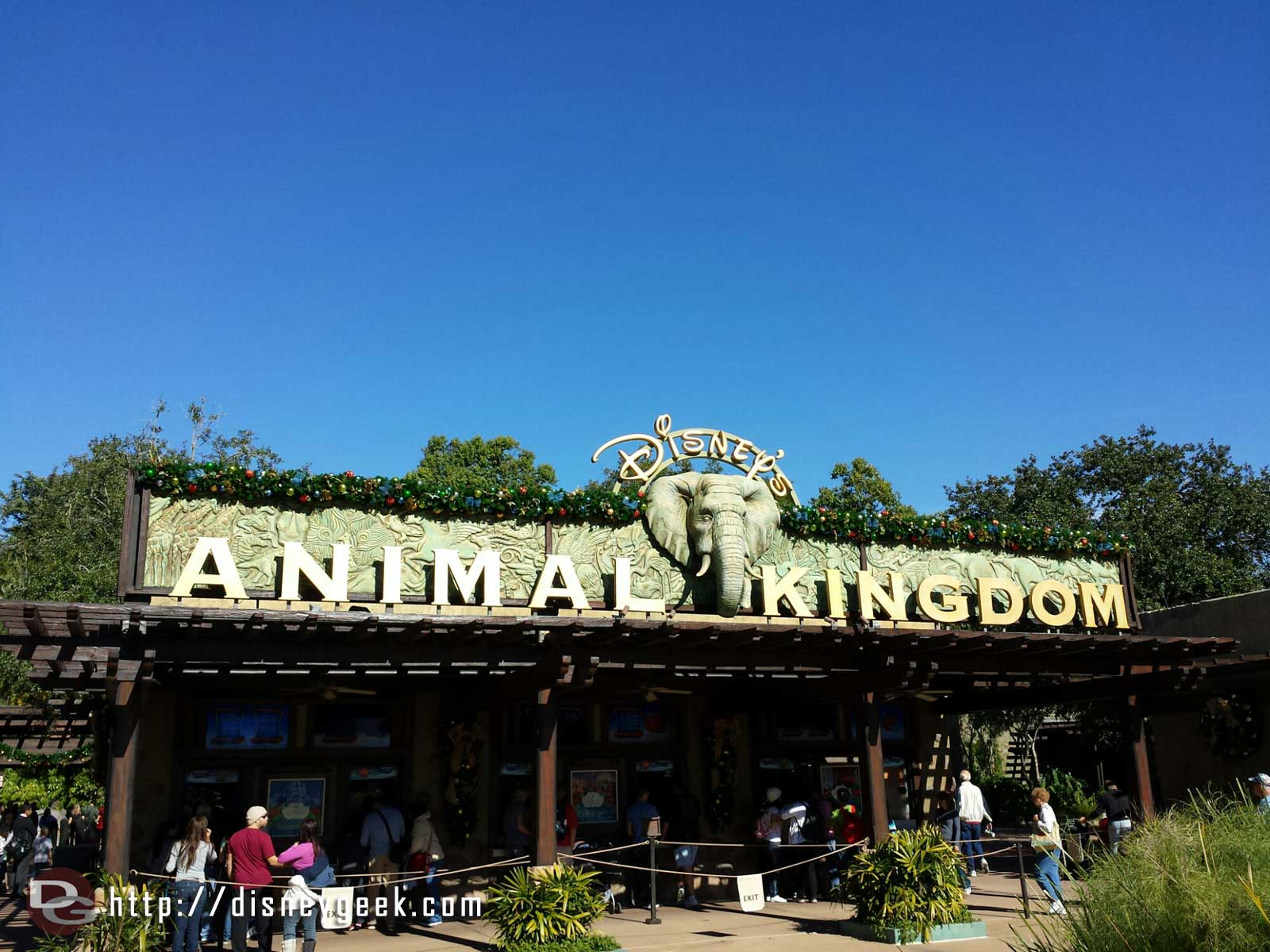 First park this morning, Disney's Animal Kingdom.