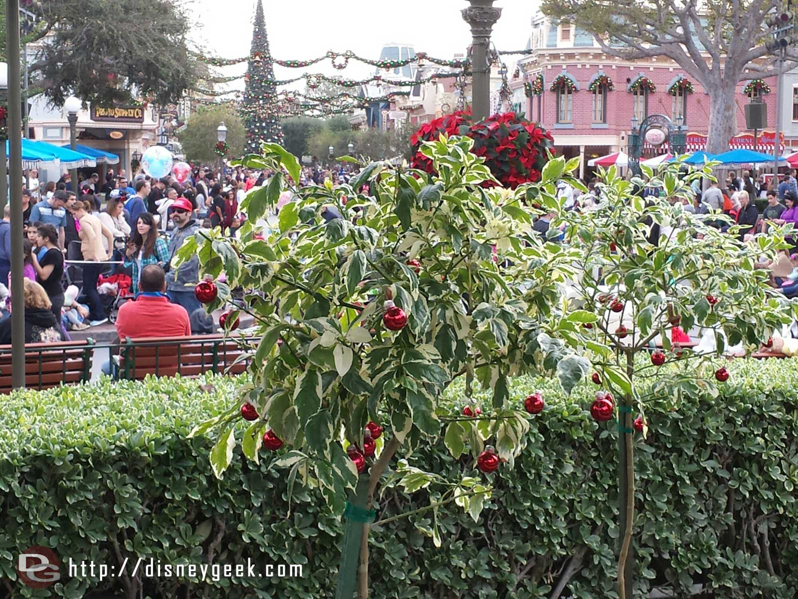 A closer look at one of the trees in the hub #Disneyland