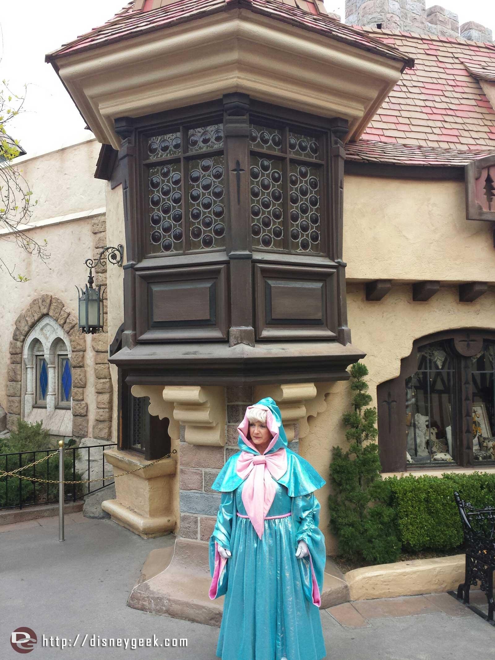 Cinderella's Fairy Godmother in Fantasyland #Disneyland