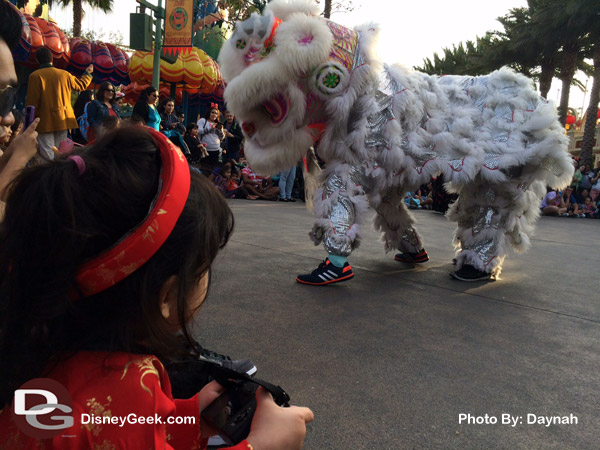 Enjoying the Lion Dance at the Lunar New Year Celebration