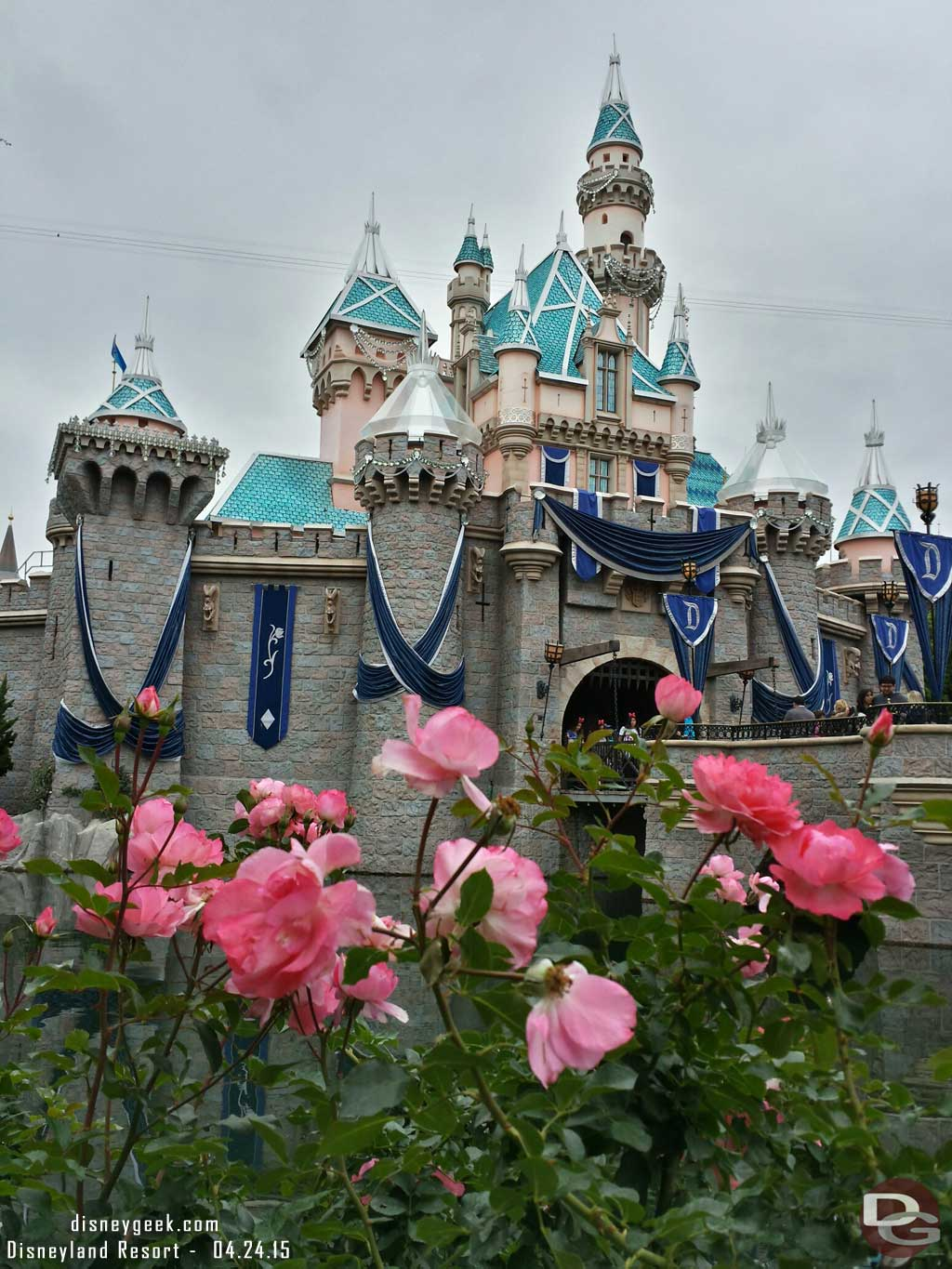 Sleeping Beauty Castle with some roses in the foreground #Disneyland