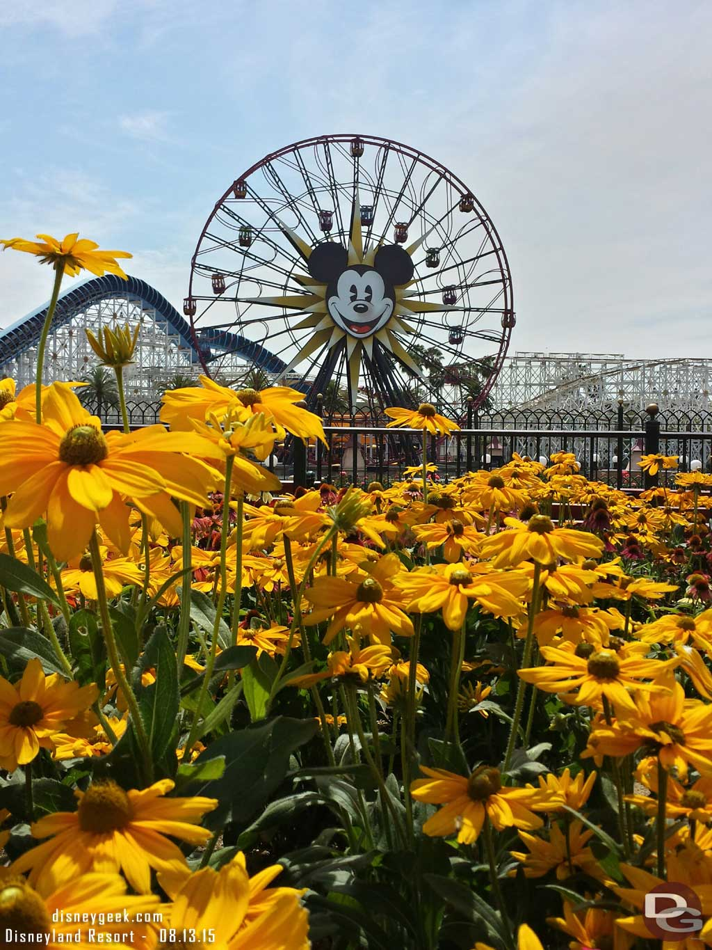 Mickey's Fun Wheel on this summer afternoon in Disney California Adventure