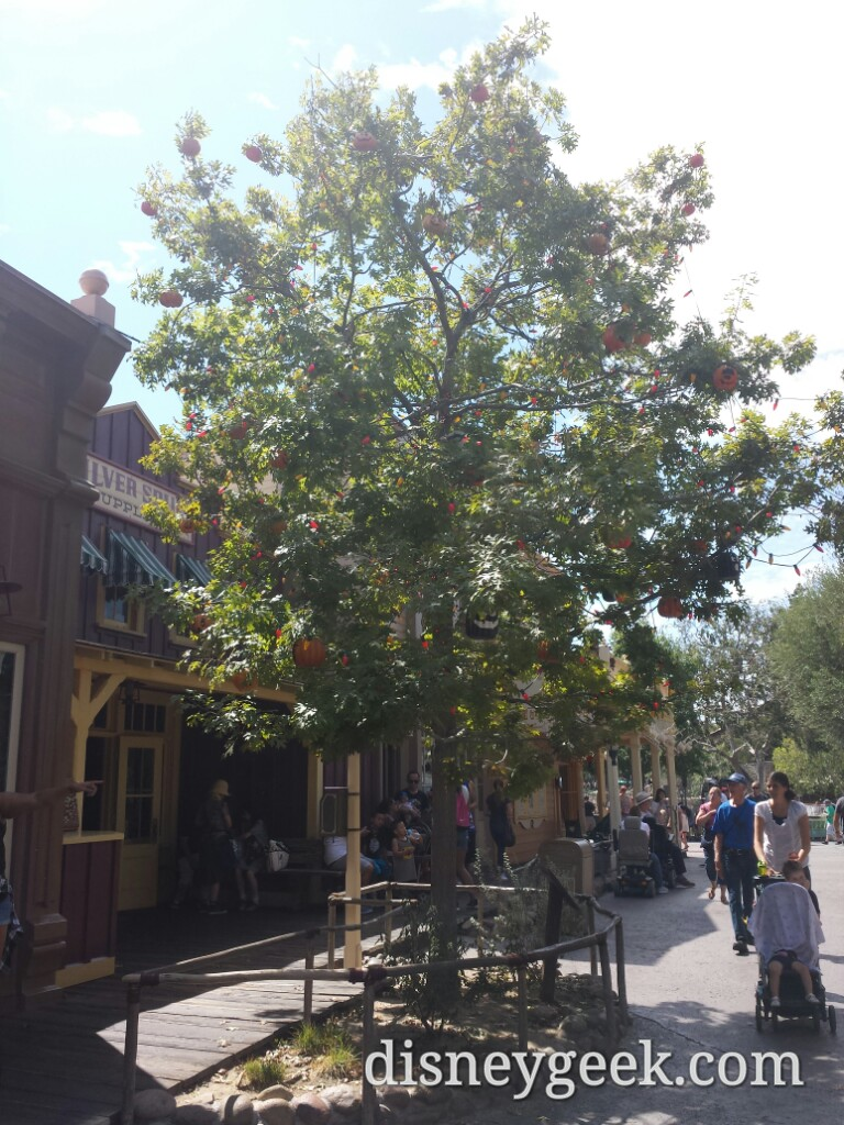 #Halloween tree is back in Frontierland #Disneyland