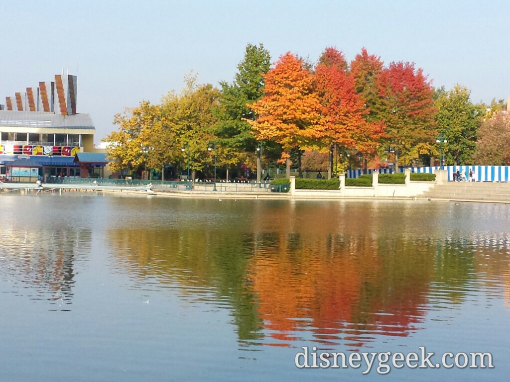 Everyday the trees change a little more #DisneylandParis