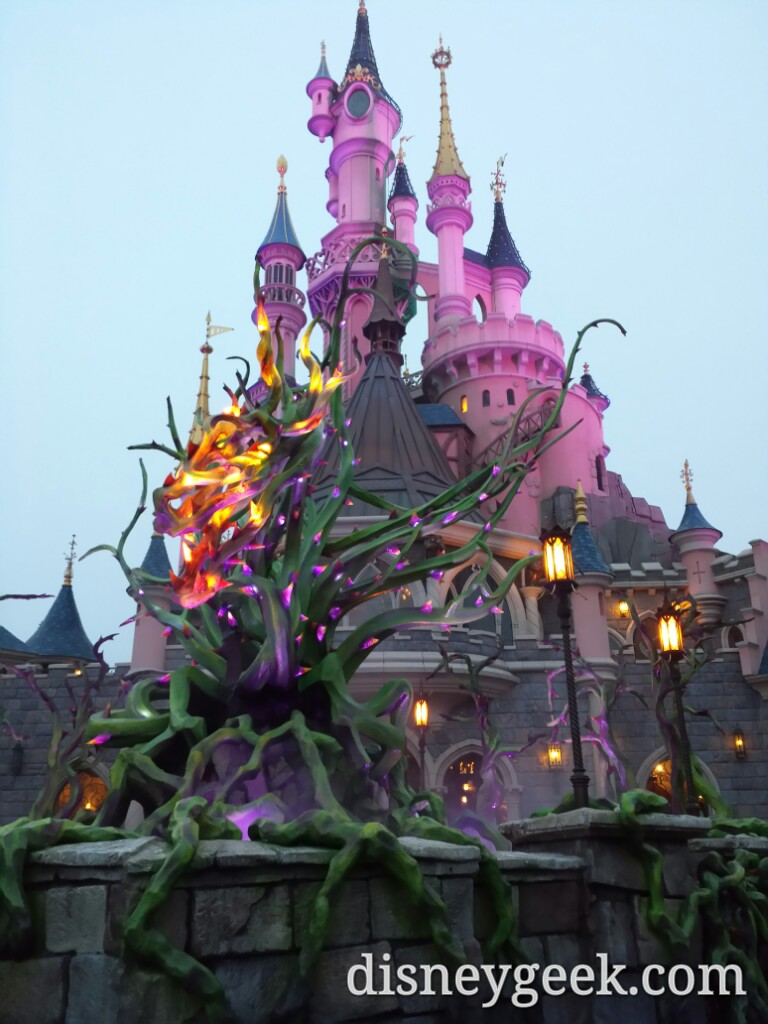 Maleficent's brambles and Sleeping Beauty Castle #DisneylandParis