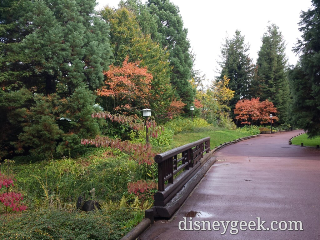 A last walk around the Sequoia Lodge grounds #DisneylandParis