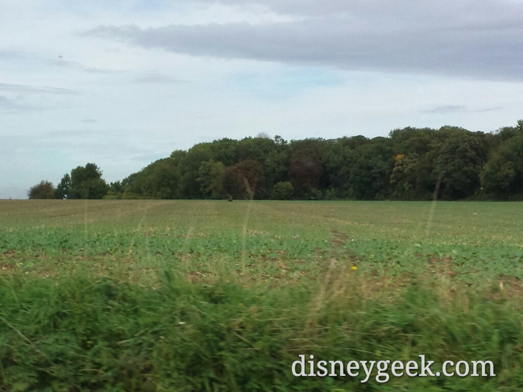 There are a lot of fields around #DisneylandParis