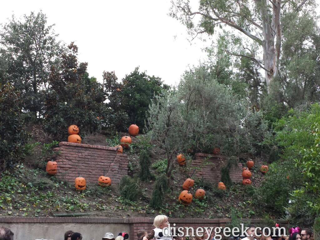 Pumpkins on the hill overlooking the Haunted Mansion queue, last visit they were not yet #Disneyland