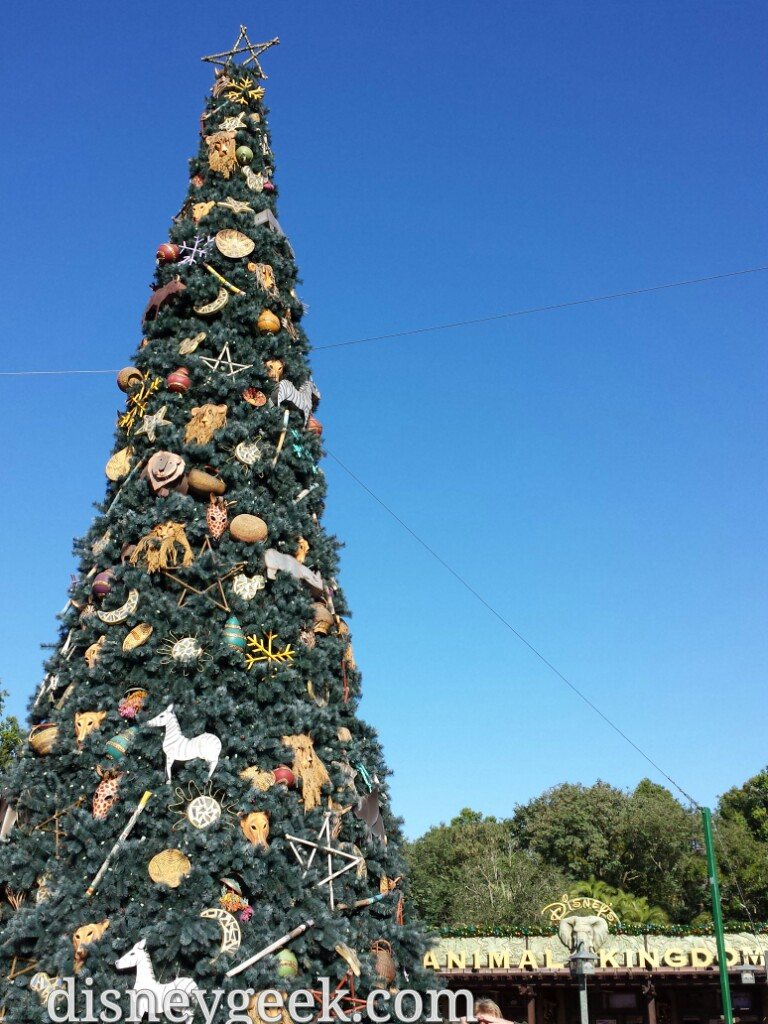 Disney's Animal Kingdom #Christmas tree #DisneyHolidays