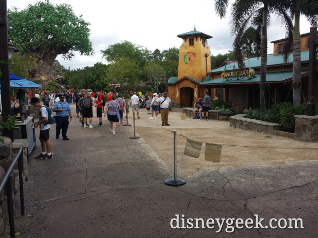 Because of the new pavement here is the path in/out of Disney's Animal Kingdom this afternoon