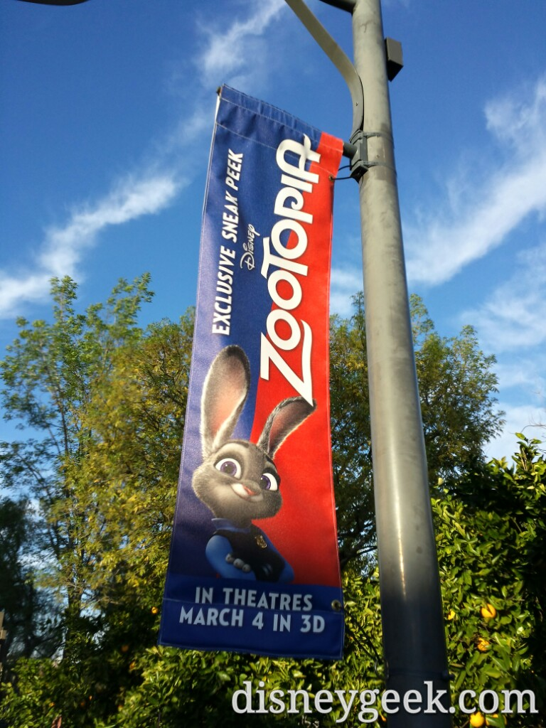 #Zootopia banners along the DCA parade route
