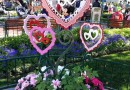 Town Square is still celebrating Valentine's day #Disneyland