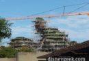 The Pandora construction from the Animal Kingdom entrance #Avatar