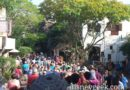 Rope drop rush to the Safari at Disney's Animal Kingdom