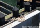 A hidden Mickey out of rope at Transportation and Ticket Center ferry dock