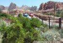 Radiator Springs Racers & Ornament Valley #CarsLand