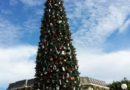 #Disneyland Main Street USA #Christmas tree