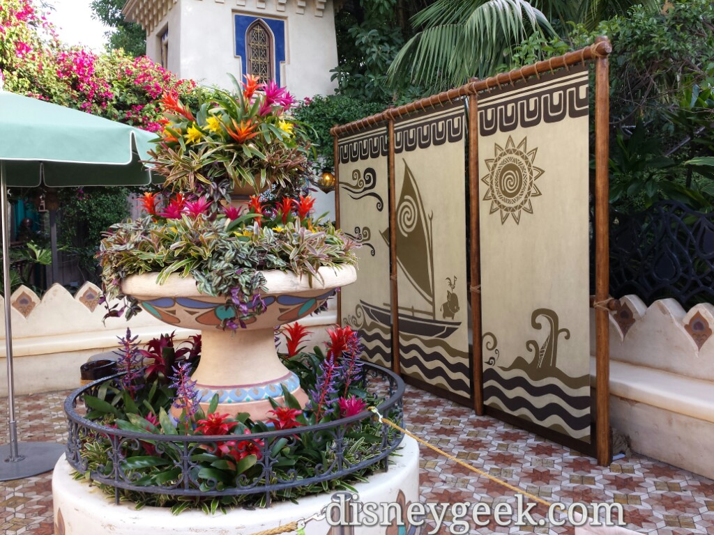 Moana Meet And Greet Location Set Up In Adventureland Disneyland